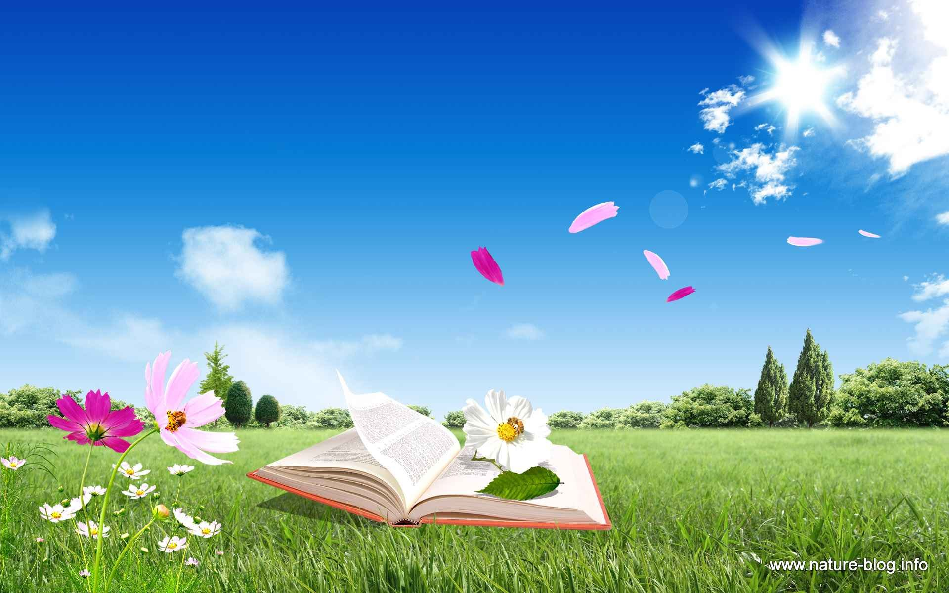 header-spring-book