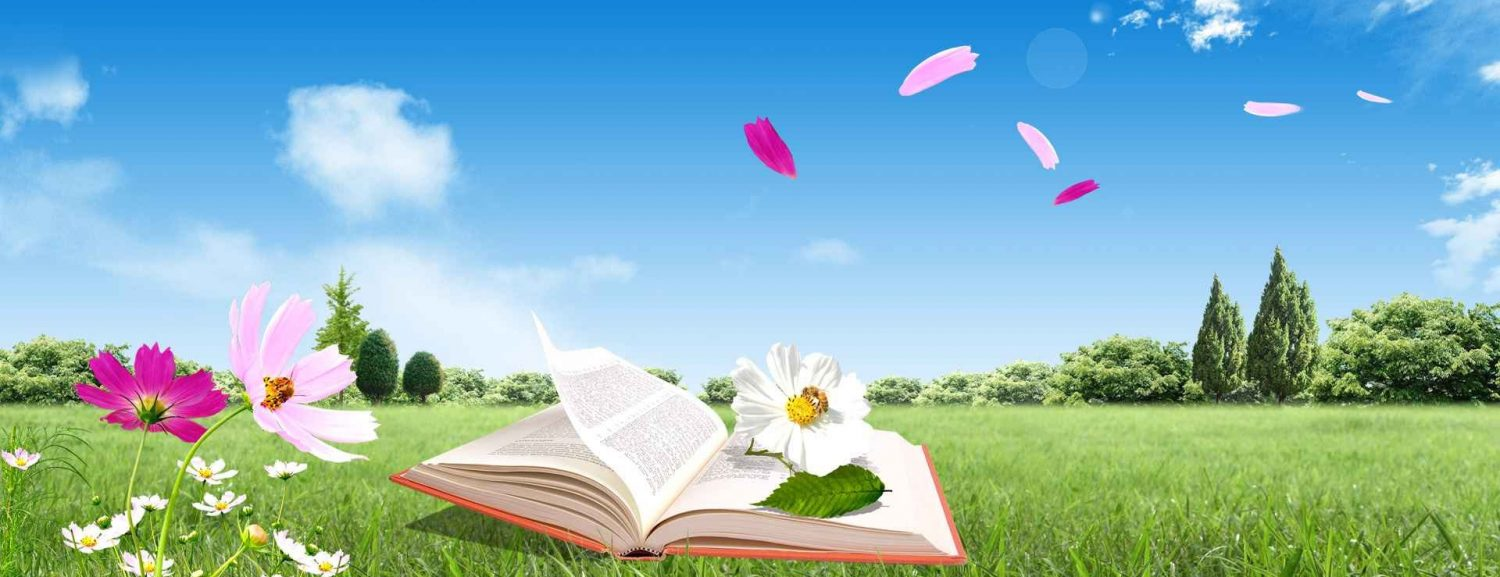 cropped-header-spring-book.jpg